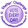 Shelter Challenge Button