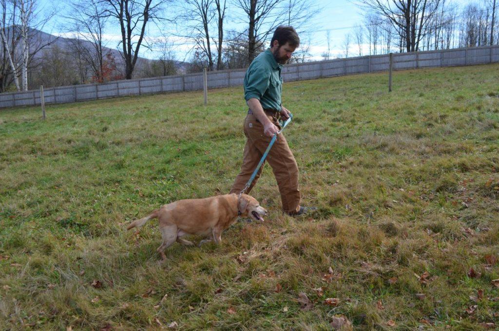 Steve with Darla walking 2