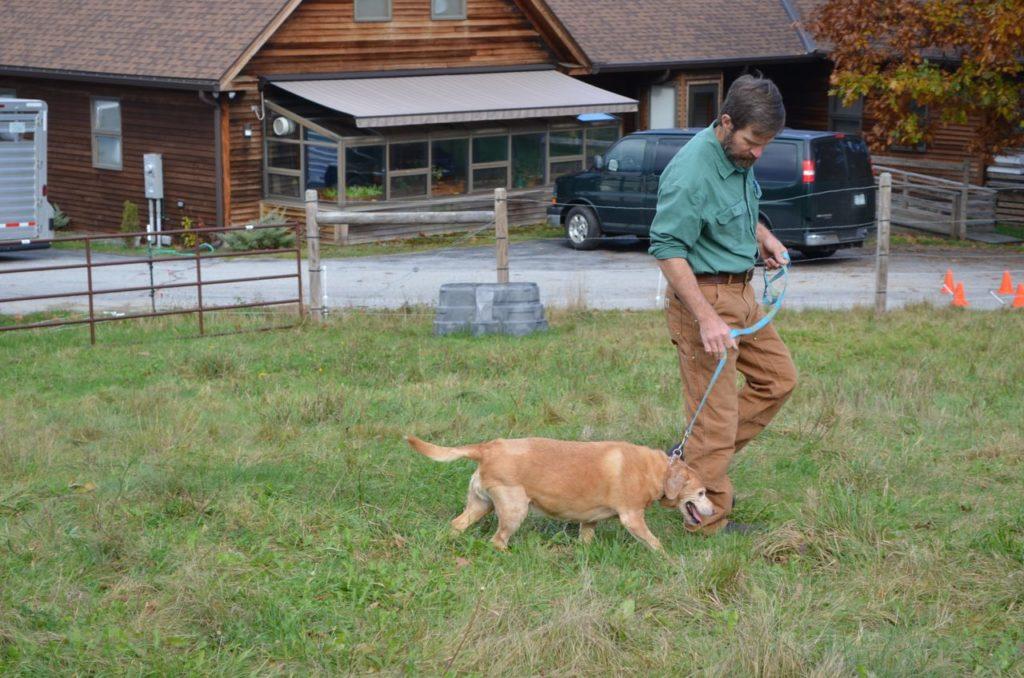 Steve with Darla walking 5