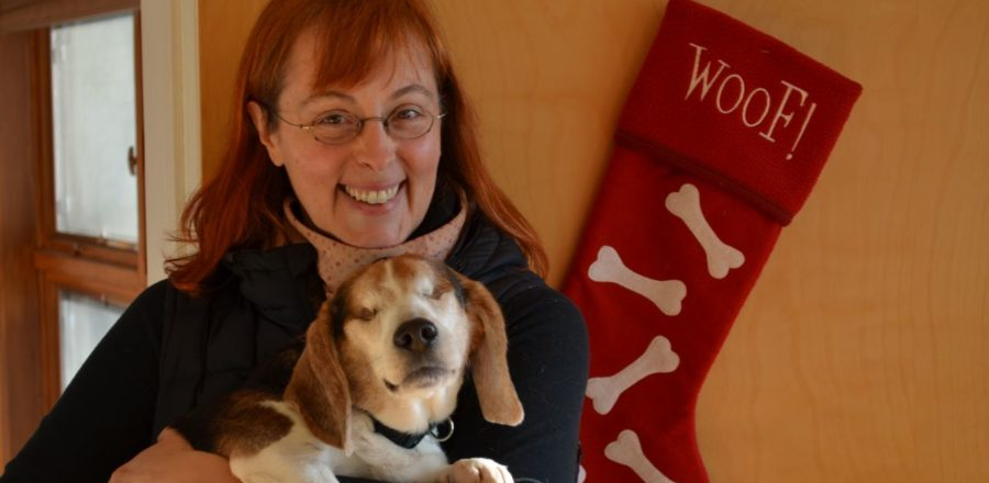 Just In Time For Christmas – Billy Gets Adopted!