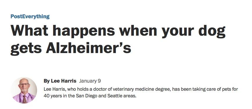 Washington Post Article on Doggie Alzheimers