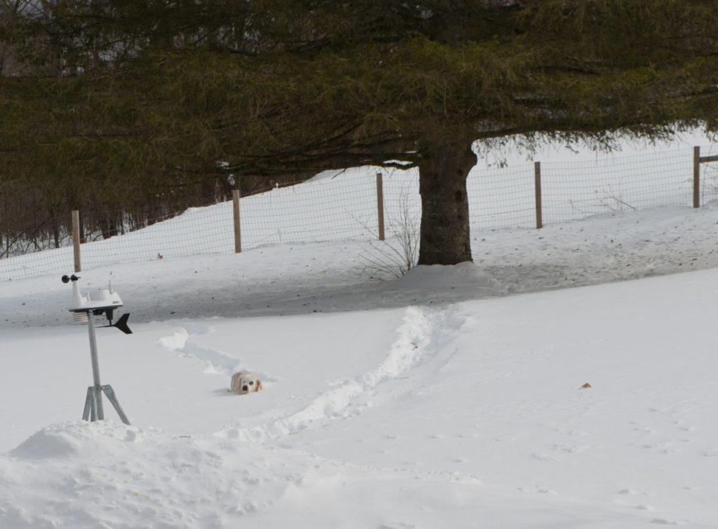 Aurora making trail in snow