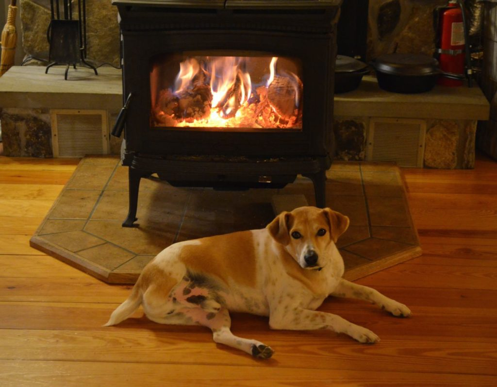 Tanner in front of wood stove 2
